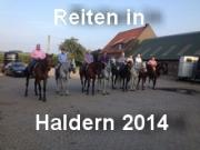 haldern2014